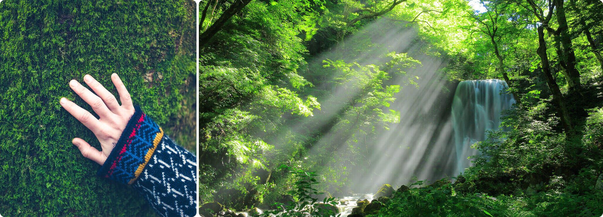 人と自然のつながりを感じる風景